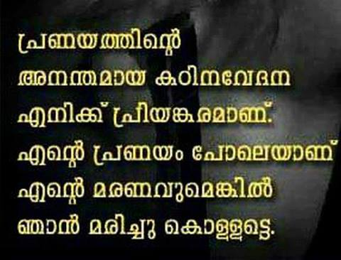 Image Of Love Words Malayalam The Gallery For Feel My Love