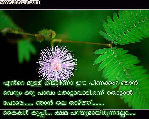 Malayalam Sad Love Scraps